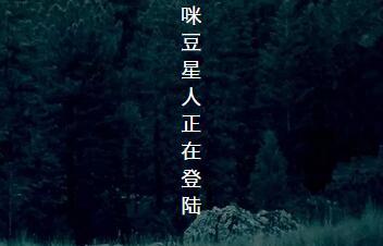 【活动】「咪豆星球·登陆计划」曹宁:水到渠成,刀过竹解。